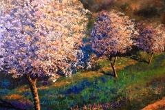 Voorjaar in de Lanquedoc